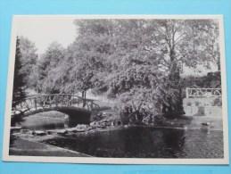 Park - Parc - Anno 19?? ( Zie Foto's Voor Detail ) ! - Wemmel