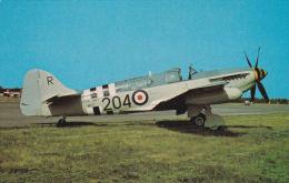 AVIATION - FAIREY FIREFLY AS5. - 1946-....: Moderne