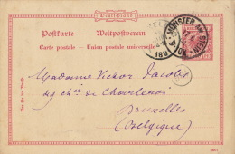 Carte Postale Munster Am Stein Bruxelles - Alemania