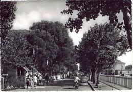 BELLARIA VIALE PANSINI 1955 . AUTO E MOTO D'EPOCA OLD CARS L800 - Rimini