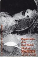 PREMIER SALON DE LA CP À NANTES 1986 PHOTOGRAPHIE YVON KERVINIO CARTE PIRATE LA VIE DE CHIEN - Bourses & Salons De Collections