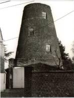 DESTELBERGEN (O.Vl.) - Molen/moulin - Romp Van Molen Buyst In 1986. Nu Geheel Begroeid Met Klimop. - Destelbergen