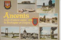 Ancenis - Ancenis