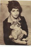 GINA LOLLOBRIGIDA With LIONET, Actress, Actrice,  Vintage Old Photo Postcard - Acteurs