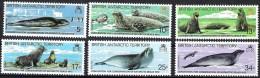 British Antarctic Territory 1983 Yvertn° 118-23 *** MNH  Cote 7,00 Euro Faune Seals - Territoire Antarctique Britannique  (BAT)