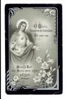 Bidprentje - Josephina VAN BEURDEN Echtg. Ludovicus Adrianus BOLS - Weelde 1877 - 1916 - Images Religieuses