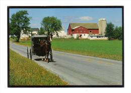 Etats Unis: Lancaster, Amish Seasons, A Buggy (15-3846) - Lancaster