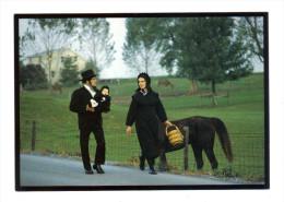 Etats Unis: Lancaster, Amish Seasons, A Young Amish Family Walks To Church On Sunday Morning (15-3851) - Lancaster