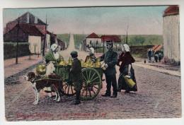 Belgique, Laitières A La Verification Du Lait, Attelage Chiens, Hondenkar (pk26756) - Marchands Ambulants