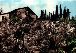 83-LA ROQUEBRUSSANNE..LES ROCAILLES..JARDIN BOTANIQUE..CPSM GRAND FORMAT - La Roquebrussanne