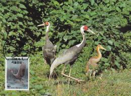 WWF - 063,32 - CM-MC - € 1,06 - 1-4-1988 - 80 - White-naped Crane - South Korea 1066212 - Corée Du Sud