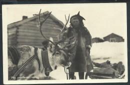 NORVEGE - HAMMERFEST- Carte Photo  Renne Et Enfant En 1932 - Voir Scans - Lot P13999 - Norway