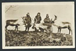 NORVEGE - HAMMERFEST- Carte Photo  Rennes Et Gardiens En 1932 - Voir Scans - Lot P14000 - Norway