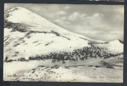 NORVEGE - HAMMERFEST- Troupeau De Rennes En 1932 - Voir Scans - Lot P14004 - Norway