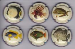SERIE COMPLETA DE 6 PLACAS DE CAVA MERVILLA (CAPSULE) PECES-PEZ-FISH - Placas De Cava