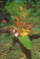Palau Edobo Temengil Sengk El Mer Kid El Mo Erechar Beautiful Local Flowers - Palau