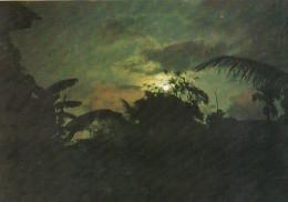 Palau Edobo Temengil Ngesechel A Buil - Palau