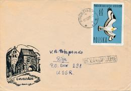 Mi 1493 Solo Cover / Birds Pandion Haliaetus Osprey Raptor - 15 October 1965 To Latvian SSR - 1944-.... Republic