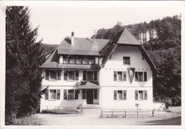 Carte Postale, Colonie De Vacances, Haut Les Coeurs, Schiltigheim, à Laubenheim, Mollkirch - Schiltigheim