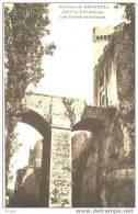 47 Chateau De BONAGUIL Les Fosses Exterieurs - France