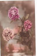 Carte Postale Ancienne Fantaisie - Fleurs - Roses - Fantaisies