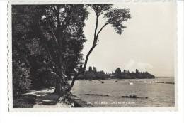 13507 -  Founex Au Bord Du Lac - VD Vaud