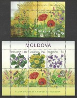 MOLDOVA 2009 FLOWERS POPPIES VIOLETS BUTTERFLIES INSECTS M/SHEET & SHEETLET MNH - Moldova