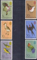 K 605 CAYMAN ISLANDS   X   YVERT  NRS  353/358  ZIE SCAN - Passereaux