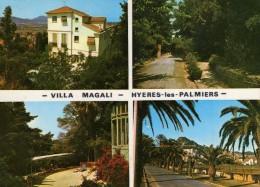 HYERES LES PALMIERS  VILLA MAGALI - Hyeres