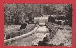 Beni Mellal --  Les Cascades - Morocco