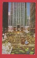 New York  --  Rockefeller Plaza --1954 - New York City