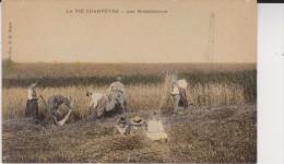 CPA La VIE Champêtre B D Hirondelle Les MOISSONNEURS Au Travail ENFANTS Dans Les FOINS - Agricultura