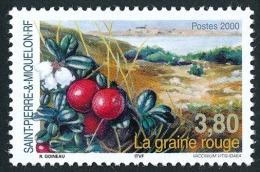 ST-PIERRE ET MIQUELON 2000 - Yv. 710 ** TB  Faciale= 0,58 EUR - Flore : La Graine Rouge ..Réf.SPM10983 - Neufs