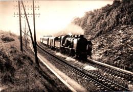 LA VOIE FERRE MODERNE French National Railways Express Train N°162 DIEPPE/PARIS Photo Borel Cpsm 15x10.5 Bon état - Trains