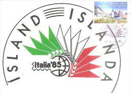 75436) Cartolina Maxmum  Della Islanda  Con 1500. Baendaskolinn A Holum 100° + Annullo Speciale Italia 85 - Cartoline Maximum