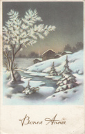 Seasonal Greeting Card Gelukkig Nieuwjaar New Year Winter Fantasy Fantaisie D`hiver - Neujahr