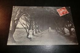 CPA 44 PAIMBOEUF. Avenue Du Cimetière. Carte Animée. Novembre 1905. - Paimboeuf