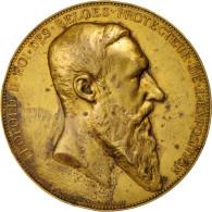Belgium, Anvers Worldwide Exhibition, Medal, 1885, EF(40-45), Wiener, Copper, 60 - Other