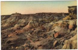 Painted Desert In The Rainbow Forest, Adamana, Arizona - United States