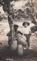 Homme Et Enfant Au Pied D'un Arbre - CARTE PHOTO - Malesia