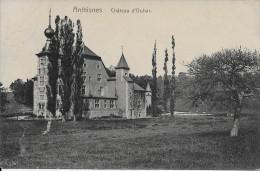 (D14 - 120 - )  Anthisnes - Château D'Ouhar - Anthisnes