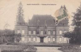9A - 79 - Saint Pardoux - Deux-Sèvres - Château De La Salinière - G. Dubois - Francia
