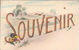 CPA Fantaisie - Souvenir - Fancy Cards