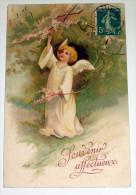 Ange Angelot Angel - Lys - Superbe Carte Postale Datée 1908 - Anges