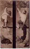 Boy Annoyed Dachshund Dogs.Russia Empire Vintage Postcard 1909 - Chiens