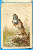 F371, Gorge - Bleue, Cyanecula Suecica, Voir Scan Du Dos - Vogels
