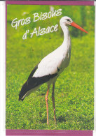 GROS BISOUS D' ALSACE .- CIGOGNE - Zebras