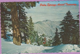 Usa °° Californie - Palm Springs Aerial Tramway Winter Wonderland - Dentelée écrite 1974 ° T-P - Palm Springs