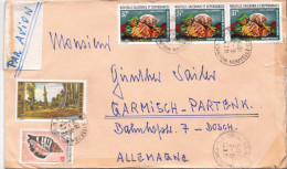 Postal History Cover: New Caledonia Cover With Shells, Trees Stamps - Pesci