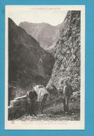 CPA 276  Route De Caillaouas Passage De La Santête Et Gorge De Clabaride âne Mule Mulet HAUT-LOURON Dép. ? - Non Classés